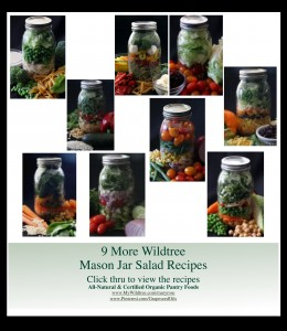 Wildtree Mason Jar Salad Recipes